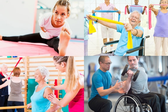 Topaz Health Training Course: NEW: Active IQ - Level 3 Award in Designing Exercise Programmes for Disabled Clients (QCF)